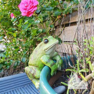 Frog Plant Pot Hanger