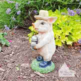 Small Pig With Watering Can