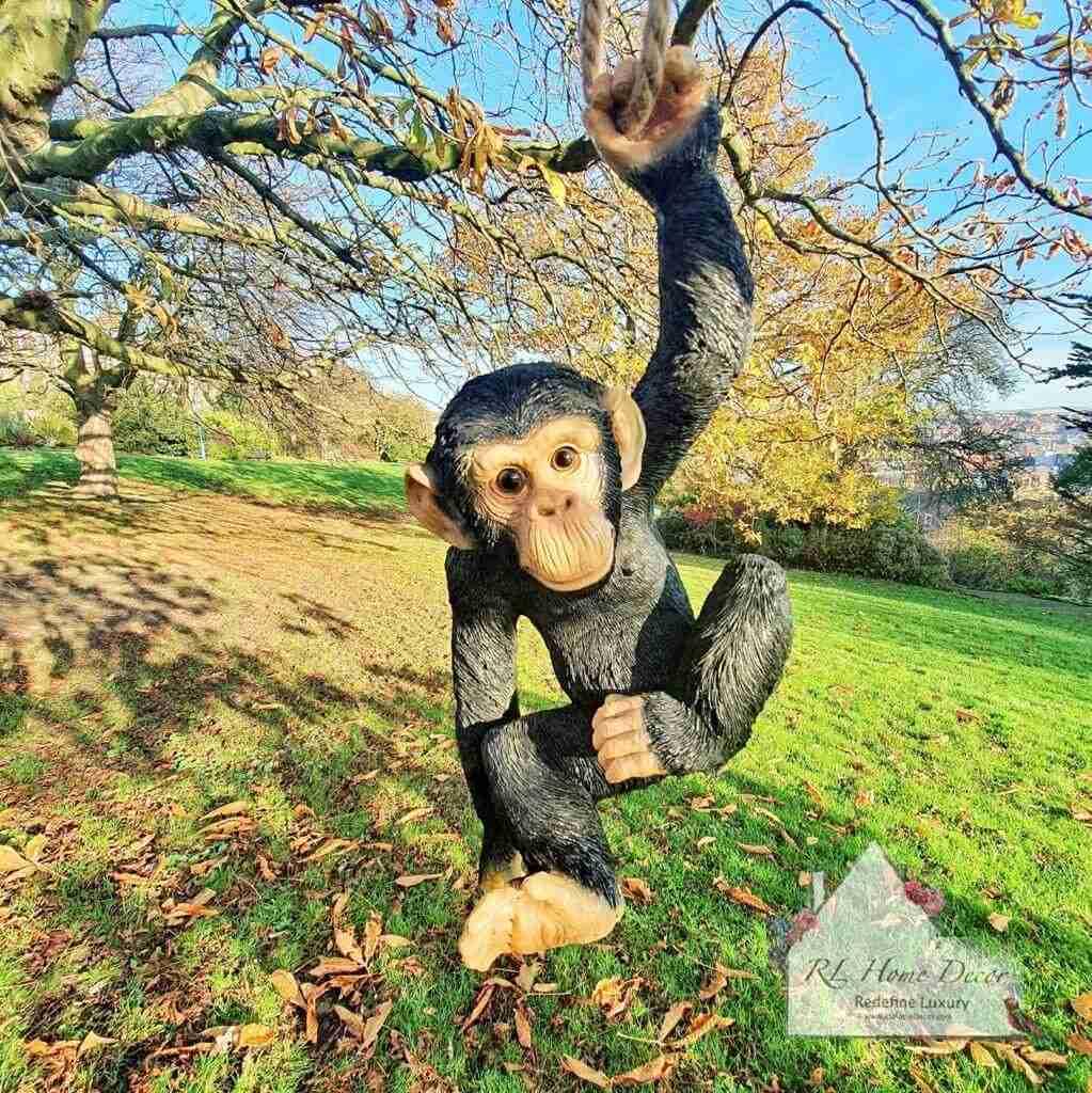 Hanging Climbing Monkey