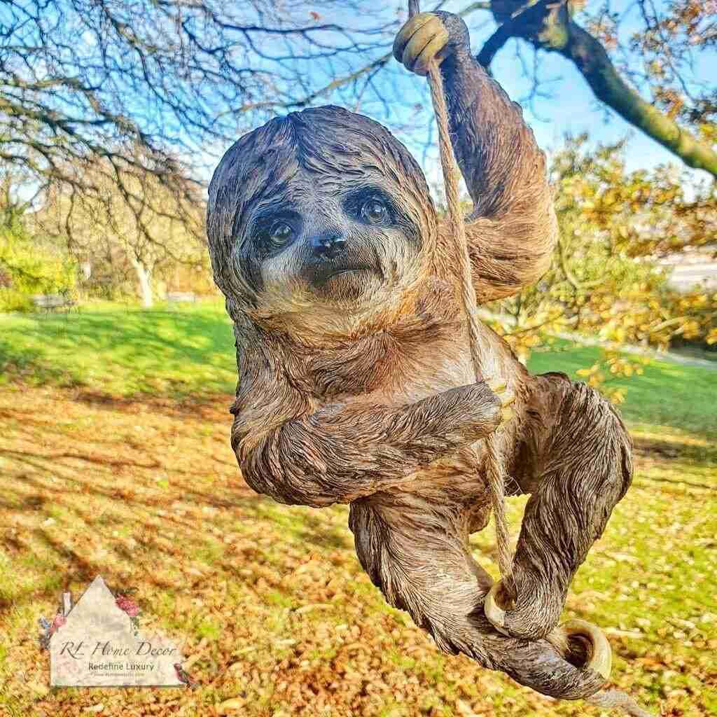 Hanging Climbing Sloth