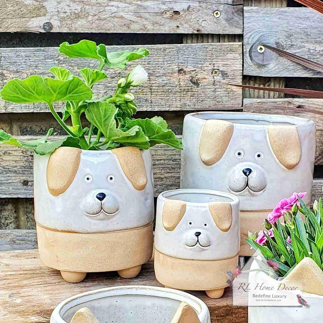 Dog Plant Pot Assortment