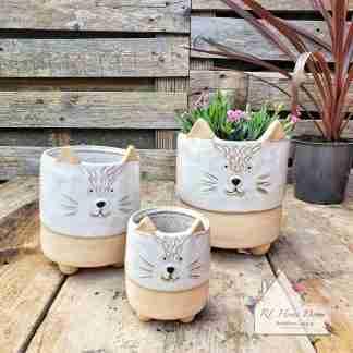 Cat Plant Pot Assortment