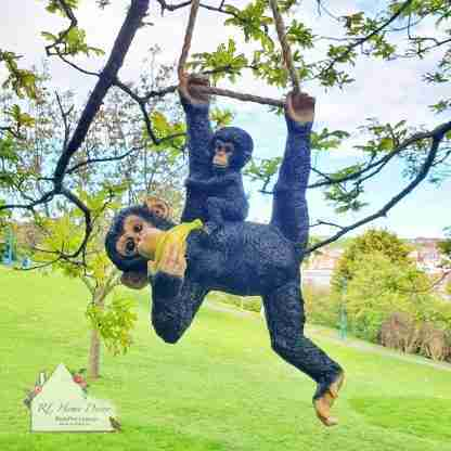 Hanging Monkey With Baby