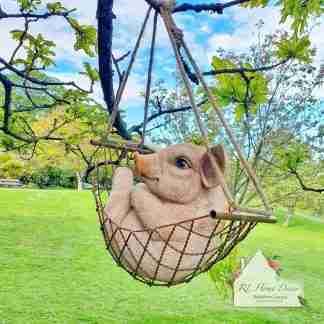 Pig In Hammock