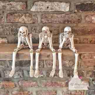 Hear, See, Speak Funny Bone