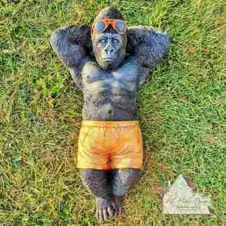 Sunbathing Gorilla