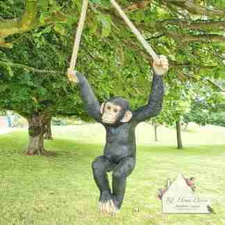 Hanging Garden Monkey