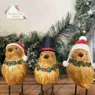 Christmas Bird Assortment