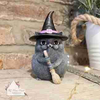 Black Broom Cat