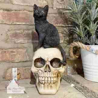 Cat On Skull